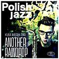 Alliance Kuba Trio Wiecek - Another Raindrop thumbnail
