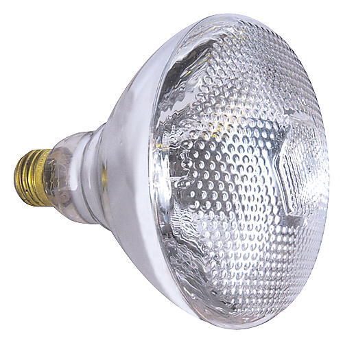 American DJ LL-PAR 38 Lamp Bulb