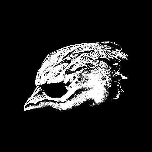 Alliance Legend of the Seagullmen - Legend Of The Seagullmen
