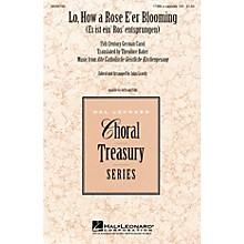Hal Leonard Lo, How a Rose E'er Blooming TTBB arranged by John Leavitt