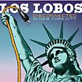 Alliance Los Lobos - Disconnected in New York City thumbnail