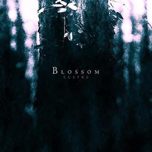 Alliance Lustre - Blossom