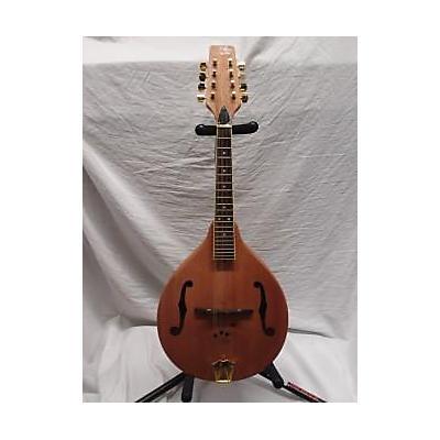 Morgan Monroe MAM100 Mandolin
