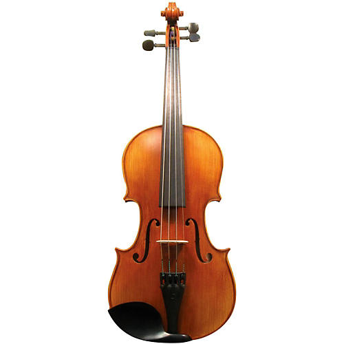 Maple Leaf Strings MLS 140 Apprentice Collection Violin Outfit Condition 2 - Blemished 4/4 Size 194744155017