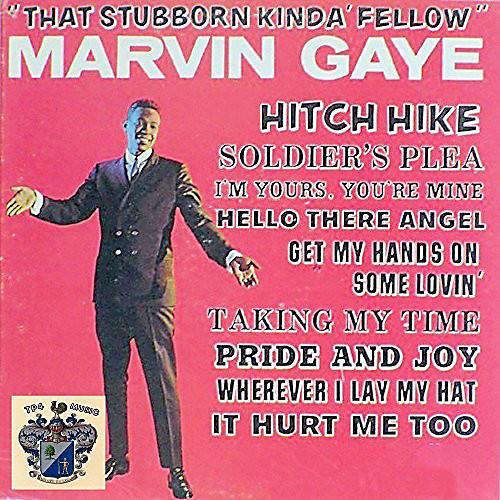 Alliance Marvin Gaye - That Stubborn Kinda Fellow