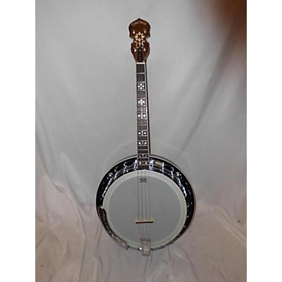 Gold Tone Mastertone IT-250F Banjo