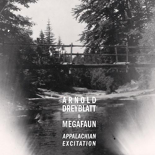 Alliance Megafaun - Appalachian Excitation