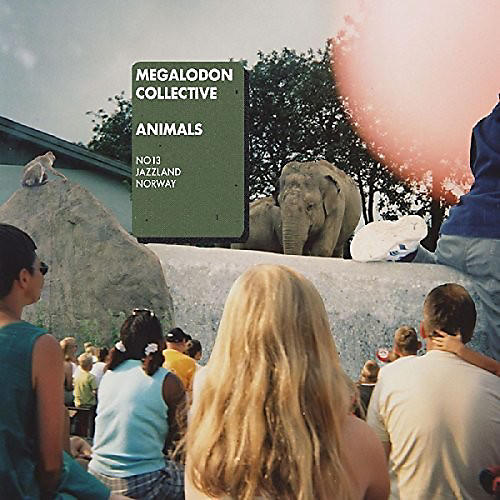 Alliance Megalodon Collective - Animals