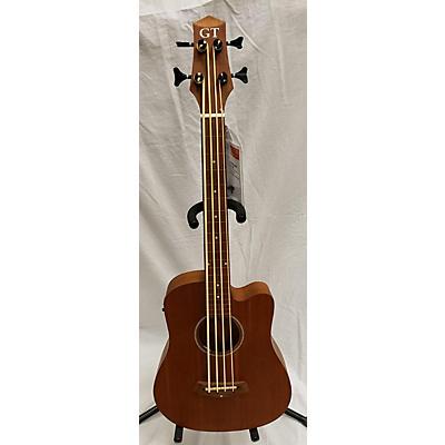 Gold Tone MicroBass25FL Acoustic Bass Guitar
