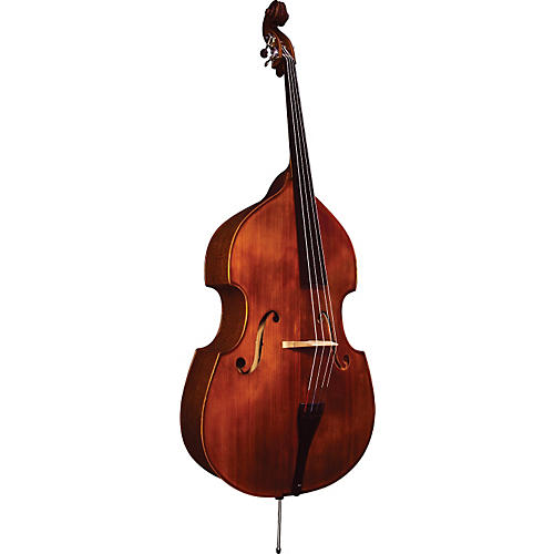 Strunal Model 5/20 Advanced Double Bass Outfit