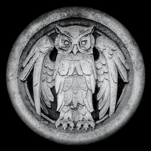 Alliance Monarchy - Abnocto