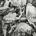 Alliance Mono - Rays of Darkness thumbnail