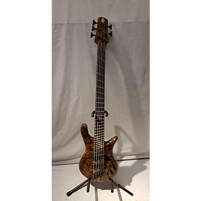 Spector NS Dimension 5 Electric Bass Guitar