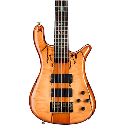 Spector NS5 Roasted/Spalted/Macassar
