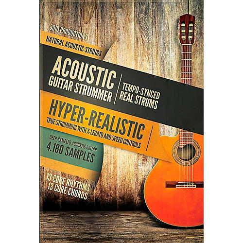 8DIO Productions Natural Acoustic Series: Acoustic Guitar Strummer ...