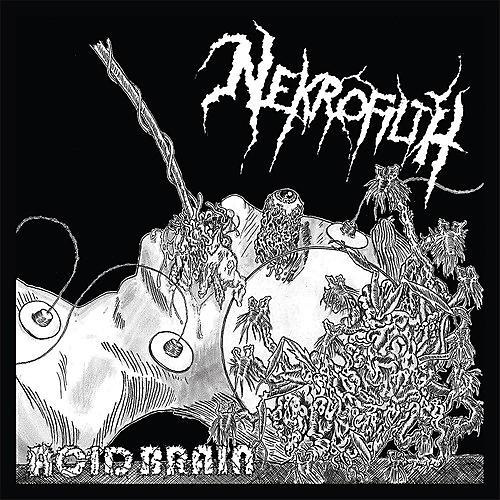 Alliance Nekrofilth - Acid Brain