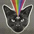 Alliance Never Shout Never - Black Cat thumbnail