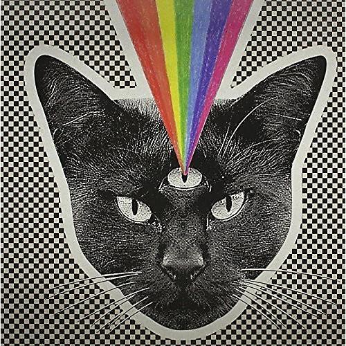 Alliance Never Shout Never - Black Cat