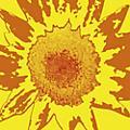 Alliance Oneida - Each One Teach One thumbnail