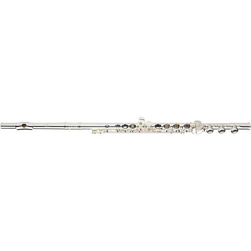 Open Box Gemeinhardt 3SB NG New Generation Flute