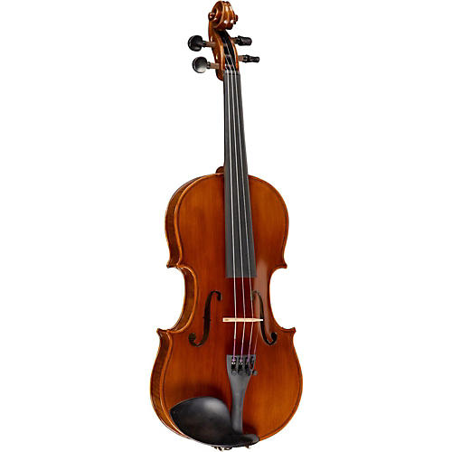 Open Box Ren Wei Shi Academy Series Violin Outfit