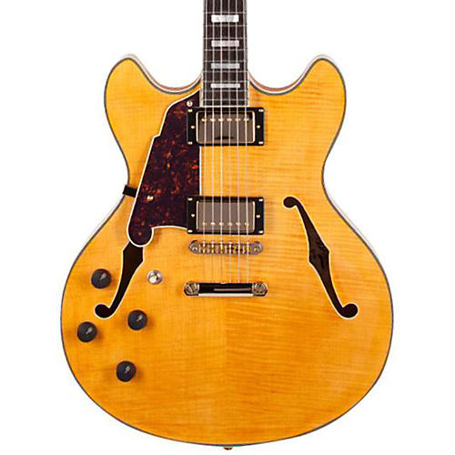 Open Box D'Angelico Excel Series DC Left-Handed Semi-Hollowbody Electric Guitar with Stopbar Tailpiece