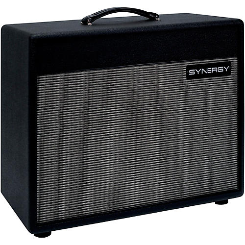 Open Box Synergy SYN-112 EXT 65W 1x12 Guitar Extension Speaker Cabinet