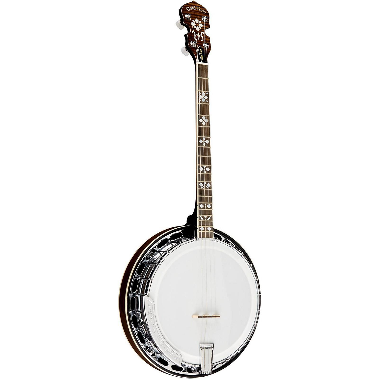 Open Box Gold Tone TS-250AT Banjo