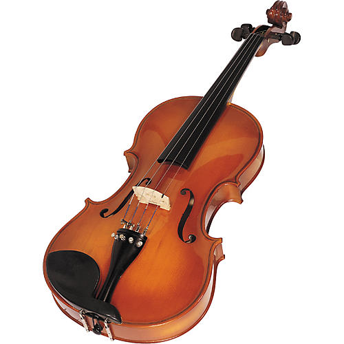Wm. Lewis & Son Orchestra Viola Outfit