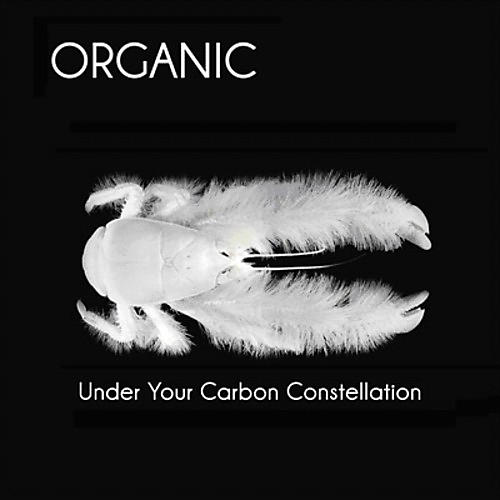 Alliance Organic - Under Your Carbon Constellation