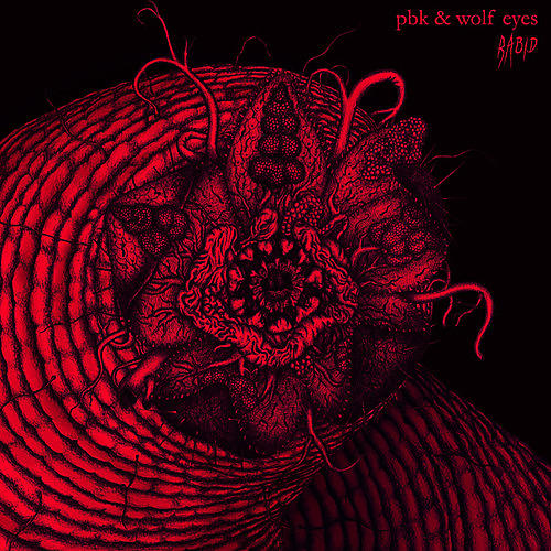 Alliance PBK & Wolf Eyes - Rabid