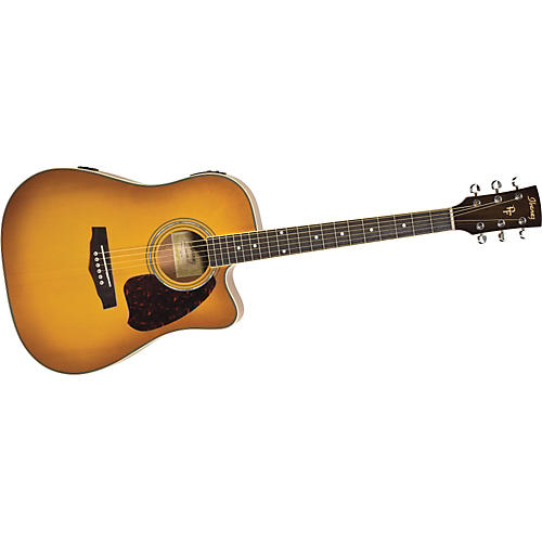 Ibanez PF25ECEWC PF Series Acoustic Electric Guitar