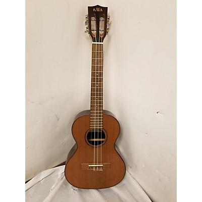 Ibanez PFT2-NT Mandolin