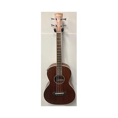 Ibanez PNB14E Acoustic Bass Guitar