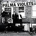 Alliance Palma Violets - 180 thumbnail