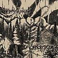 Alliance Panopticon - Panopticon & Waldgefluster thumbnail