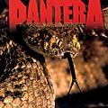 WEA Pantera - The Great Southern Trendkill 180 Gram Vinyl 2LP thumbnail