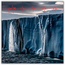 Pearl Jam - Gigaton [2 LP]