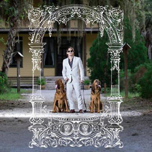 Alliance Pet Symmetry - Pets Hounds