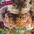 Alliance Peter & Test Tube Babies - Mating Sounds of South American Frogs thumbnail