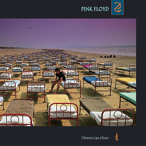 Sony Pink Floyd - A Momentary Lapse Of Reason