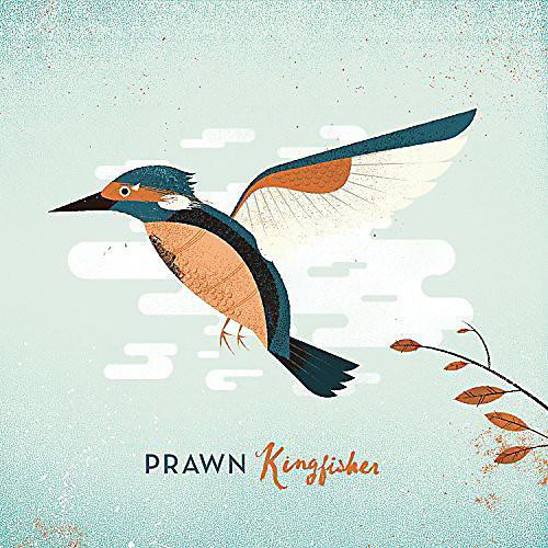Alliance Prawn - Kingfisher