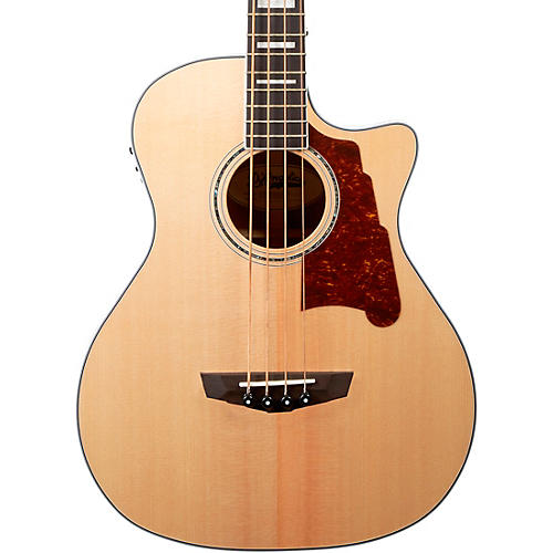 Premier Series Mott Single Cutaway Acoustic Bass with Onboard Preamp and Tuner