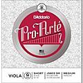 D'Addario Pro-Art Series Viola G String thumbnail
