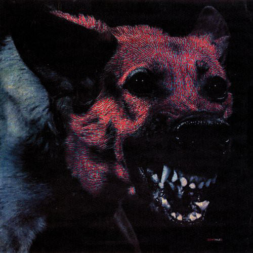 Alliance Protomartyr - Under Color of Official Right