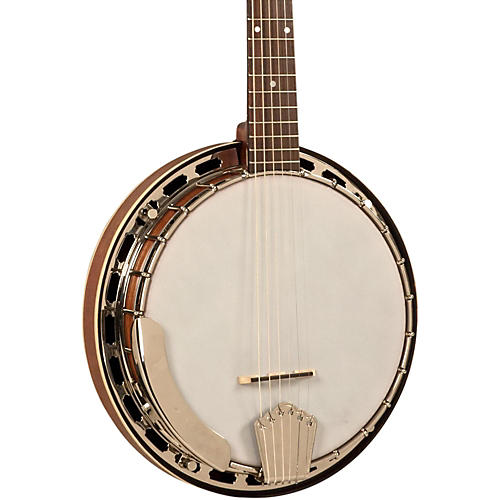 Recording King RK-R25 6-String Banjo