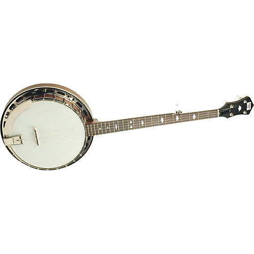Recording King RK-R25 Madison Tube-and-Plate 5-String Banjo