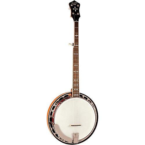Recording King RK-R30 BlueGrass Machine Banjo