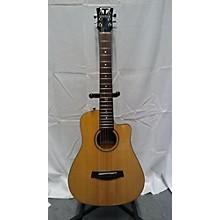 Traveler Guitar RM SP Acoustic Guitar