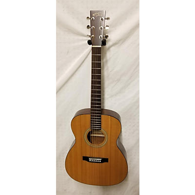 Recording King RO-06M-FE3 Acoustic Electric Guitar
